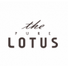 The Pure Lotus